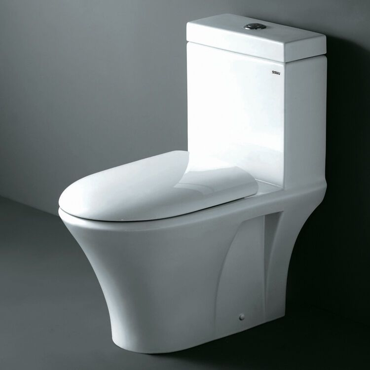 Ariel Co1003 Modern One Piece Dual Flush Elongated Bowl Toilet  Softclose Seat  Ebay